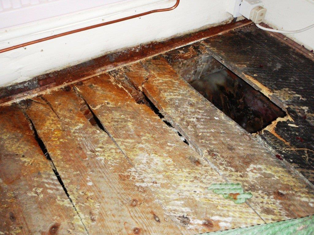 Affordable Wet Rot Amp Dry Rot Treatment In Dorset Amp Hampshire
